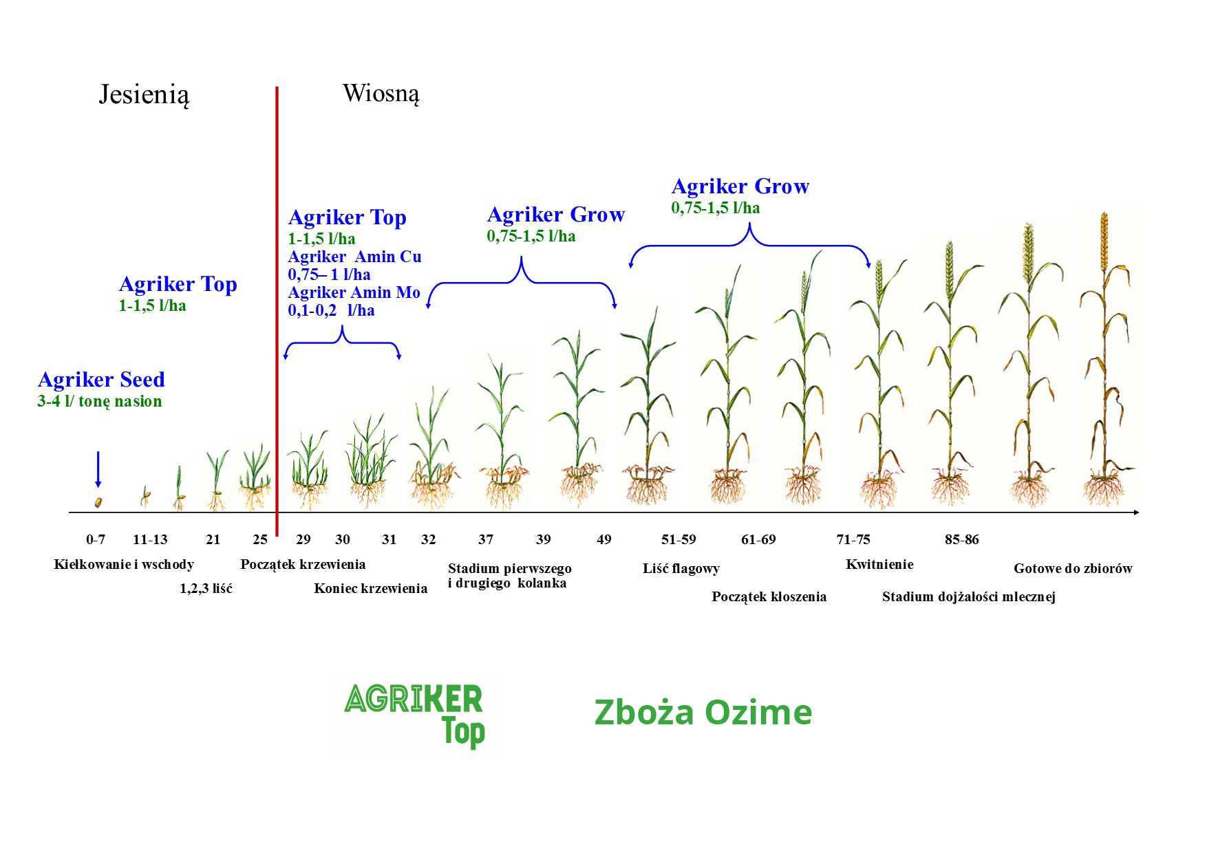 nawóz aminokwasowy