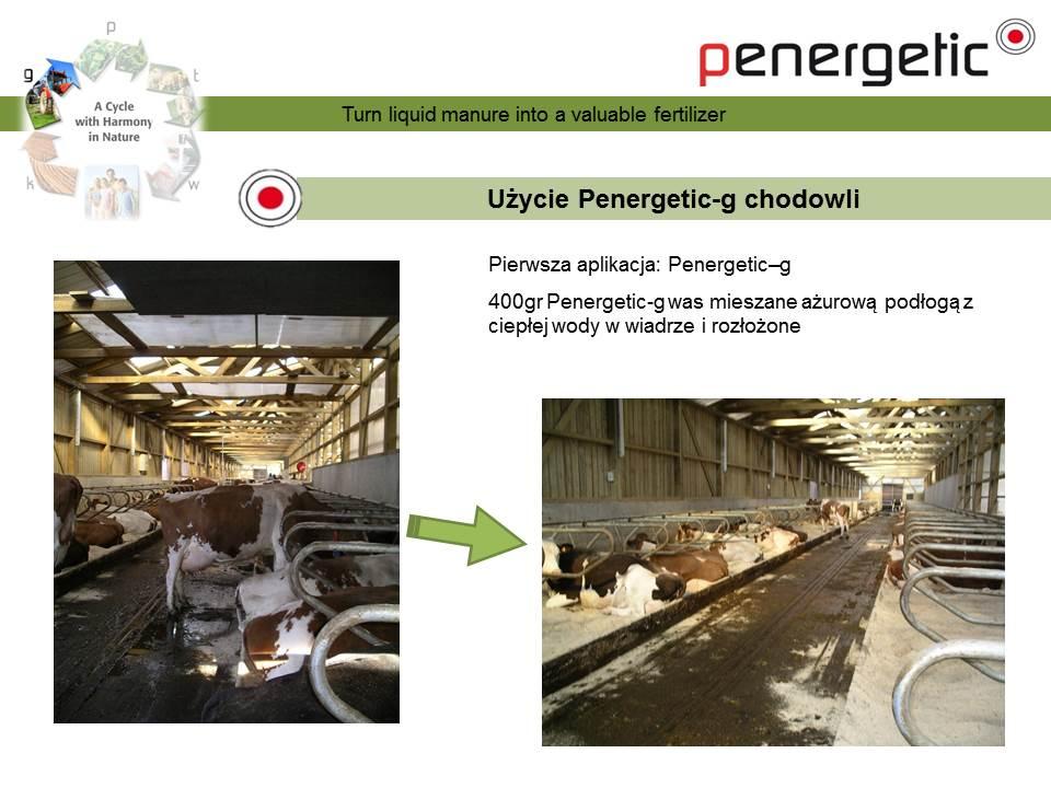 penergetic-g