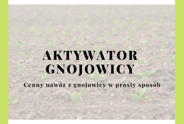 aktywator gnojowicy